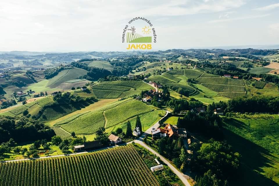 Dan odprtih vrat vinarjev Jakoba 2020