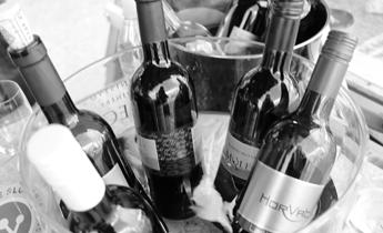 Ljubljanska vinska pot- Martinovanje v LJubljani